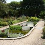 Част от градината с водни растения