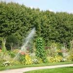 Ботаническата градина в Париж