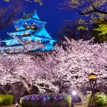 Замък в Осака, Япония