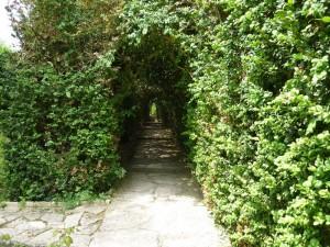 Входът към градината на плачещите дървета