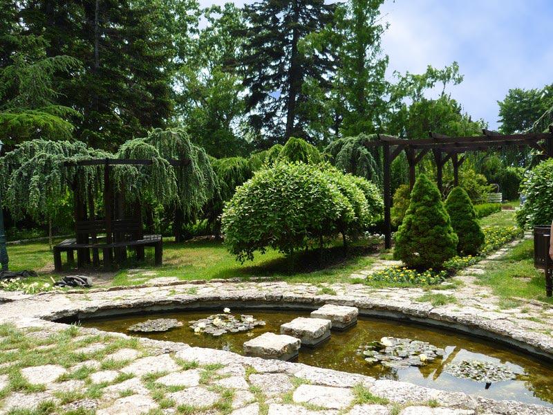 Градината на плачещите дървета