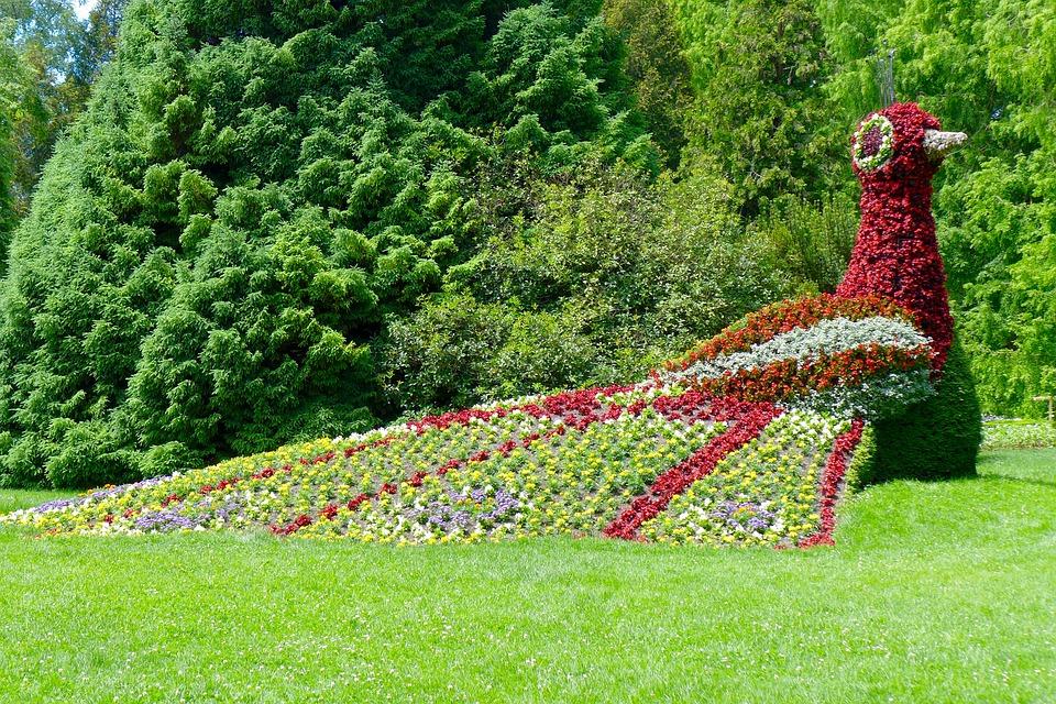 Фигура на паун от цветя - остров Майнау